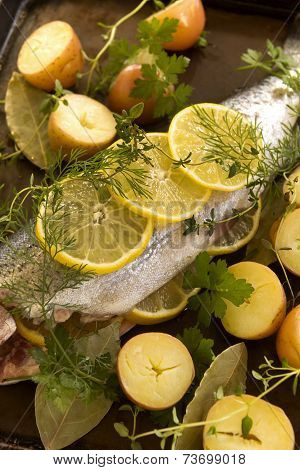 Raw Trout And Vegetables