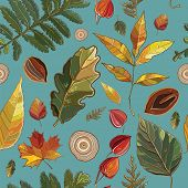 stock photo of willow  - Vector seamless pattern with autumn set leaves nuts tree - JPG