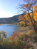 Colorado River In Fall