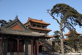 image of zedong  - Chinese pavilion under clear blue sky in winter time - JPG