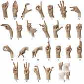 Asl Alphabet With Labels