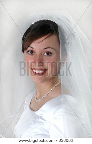 Bride Portrai