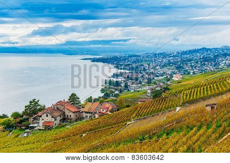 Beautiful view on Lavaux vineyards and the lake Geneva, Vaud, Switzerland, autumn