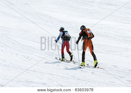 Ski mountaineering Championships: team ski mountaineer rise to mountain on skis