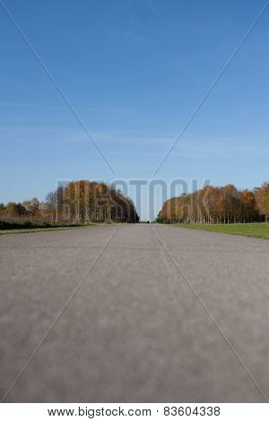 Way To The Horizon In Autumn