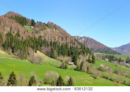 Mountain Greenery Landscape
