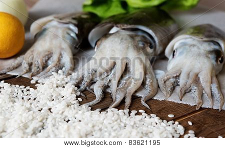 Fresh cuttlefish with vegetables