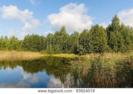Small Wood Lake