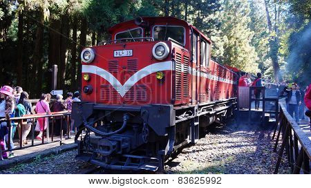 Tourists Take A Ride On Alishan Mountain Train
