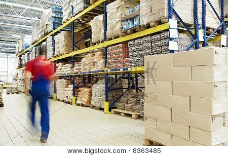 Warehouse And Worker
