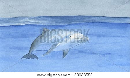 Swimming dolphin artwork