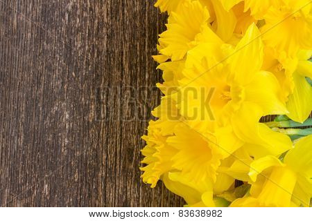 daffodils on wooden background