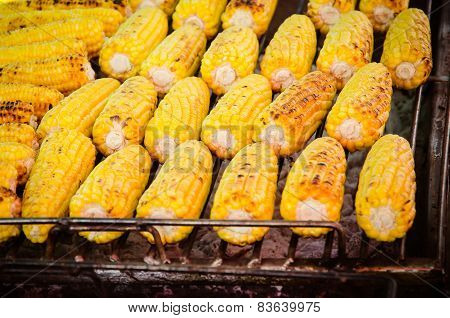 A Close-up Of Grilled, Yellow Corncobs.