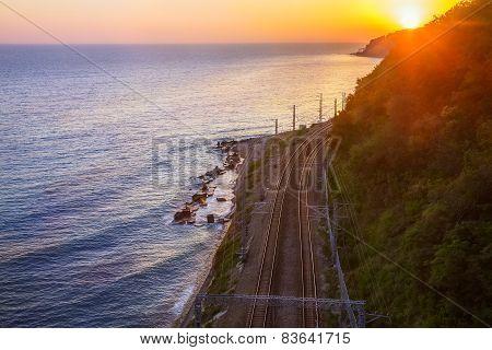 Railway On Seacoast Leaves On Sunset