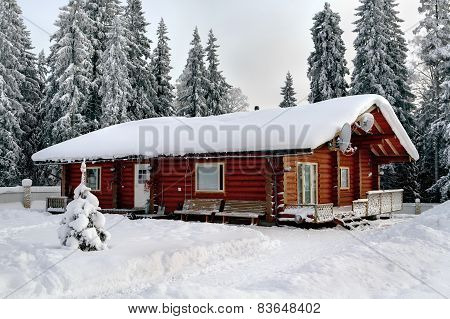 Russian Hut Stained Logs, On The Background Of Snow-covered Forest.
