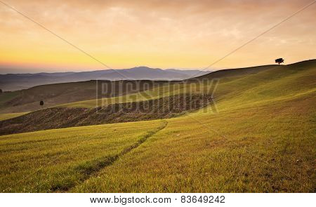 Farmland Near Volterra, Rolling Hills On Sunset. Rural Landscape. Tuscany, Italy