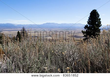 View Of Carson Valley Nevada Nea Genoa