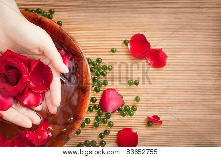 Female Hands In Water With Red Rose And Petals