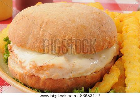 Chicken Sandwich Close Up