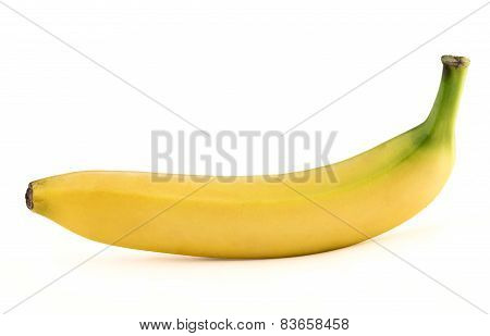 Single yellow spotless banana over white