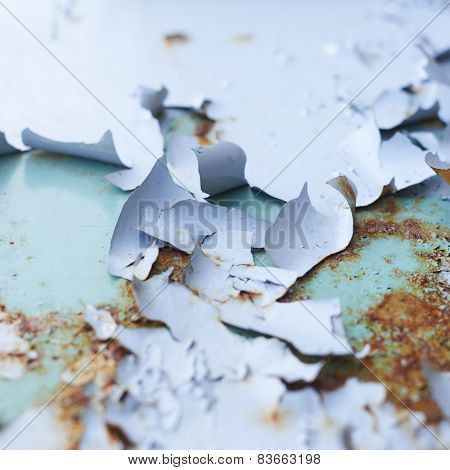 Blue paint flakes falling off