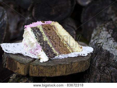 Sponge cake with cream cheese