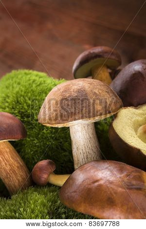 Fresh Mushrooms On Wooden Background.