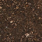 stock photo of fragmentation  - Earth ground covered with compost mulch fragment as a texture background