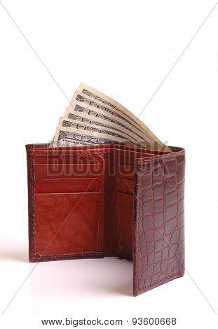 Cash Money In Wallet