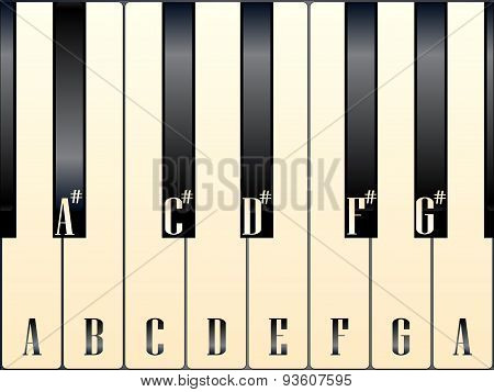 Piano Keys Note Names