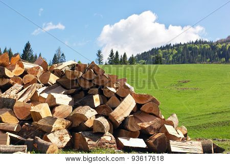 Sectional Drawing Stack Of Firewood On The Green Grass