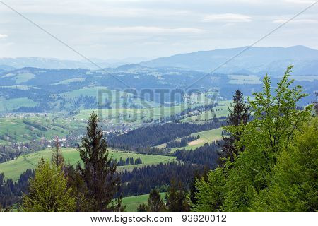 Landscape Of A Mountains With Fir-tree And Green Valley