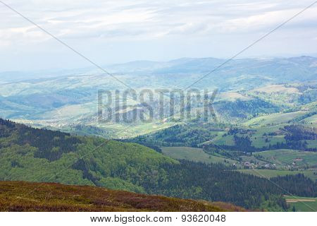 Mountains With Green Trees And Fir-tree