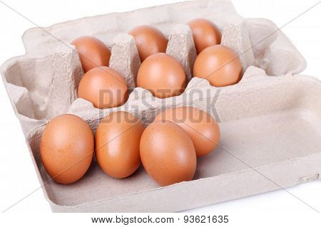 Ten brown eggs in a carton package