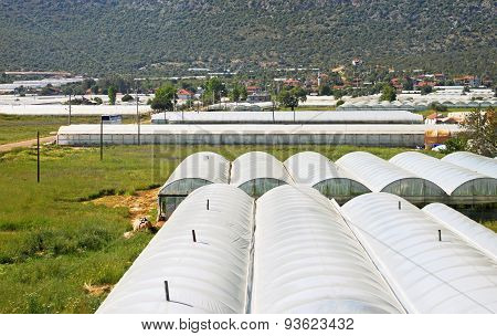 Glasshouses With Plastic Near Village In Turkey
