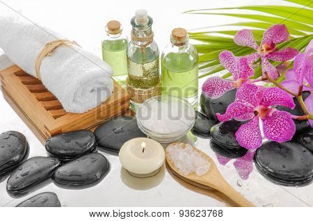 spa still life with green palm and spa set on wet background