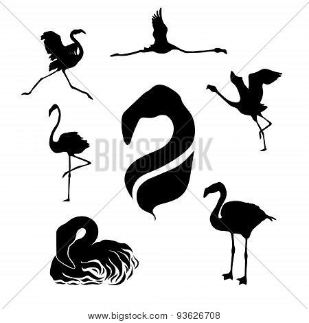 Flamingo set vector