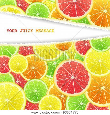 Fruity slices citrus background