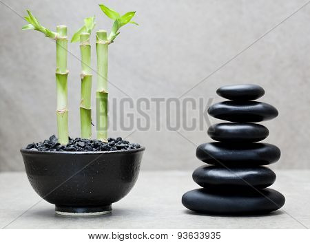 lucky bamboos beside stack of massage stones