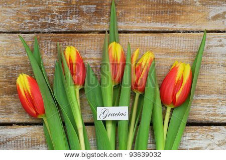 Gracias (which means thank you in Spanish) card with red and yellow tulips