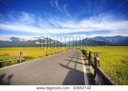 The Beauty Of The Farmland In Taitung Taiwan
