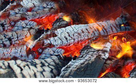 Brightly Burning Wood