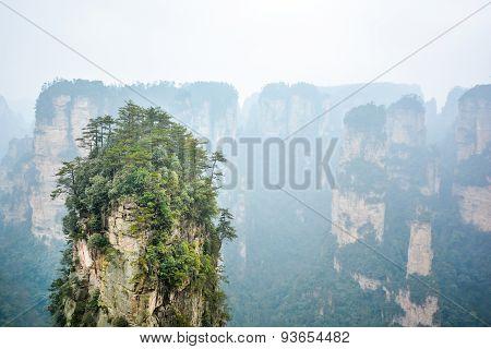 Rock Column In Zhangjiajie National Forest Park