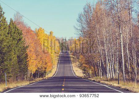 autumn in Sierra Nevade