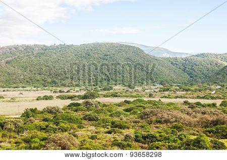 Wilderness National Park