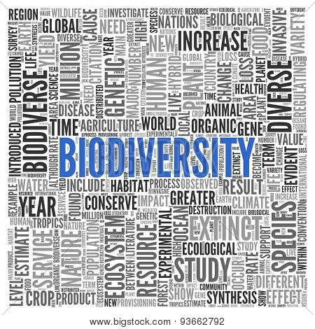 Close up BIODIVERSITY Text at the Center of Word Tag Cloud on White Background.