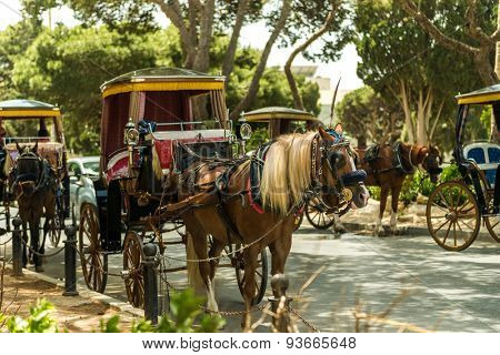 Row of horse with carriages in Mdina, old capital of Malta. Attraction for tourists.