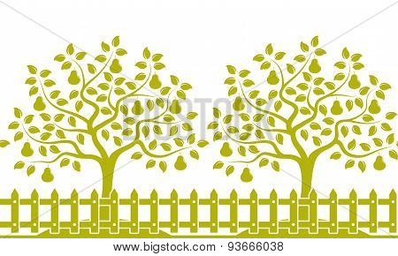 Pear Tree Orchard Border