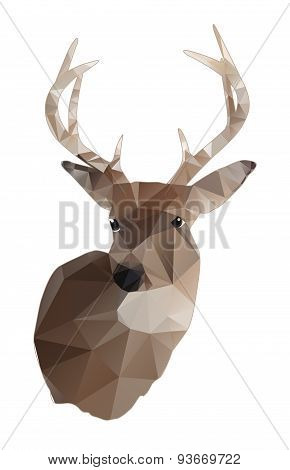 Whitetail Deer Buck Abstract Design