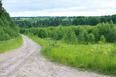 stock photo of dirt road  - rural sandy dirt road leading past a forest - JPG